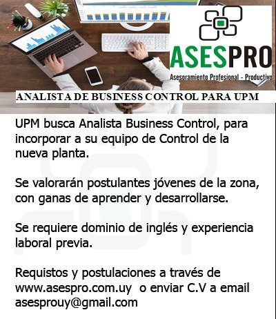 ASESPRO LLAMADO ANALISTA BUSINESS